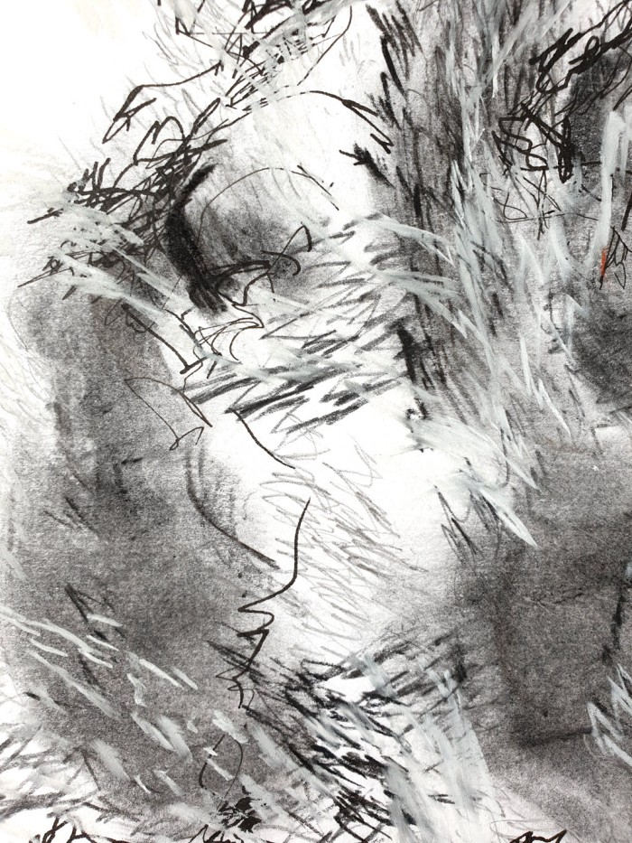 Detail of abstract drawing of a tree in the wind