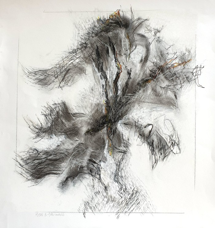Abstract drawing of a tree in the wind